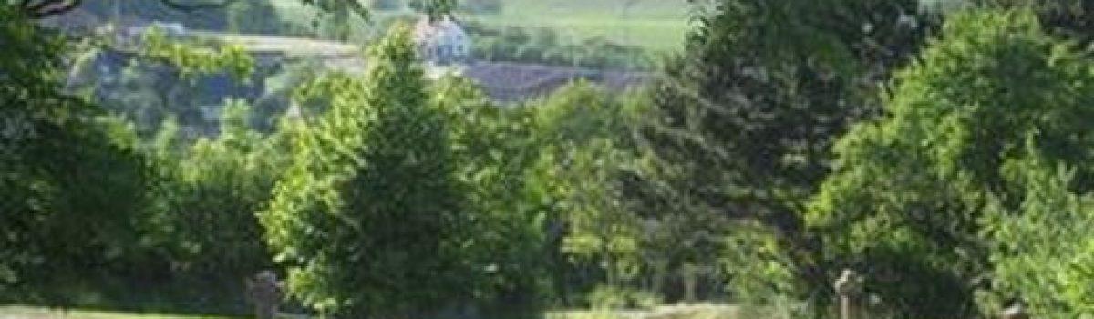 Galerie du village de Hohengoeft